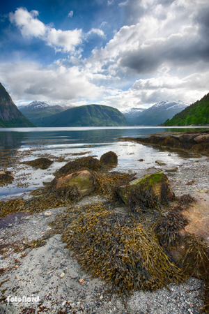 fjord landscape in Norway