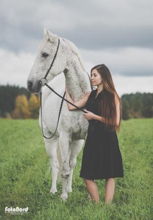 hästfotograf Umeå