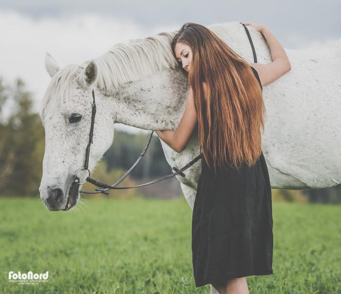 fotograf Umeå hästar